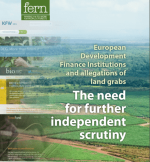 European Development Finance Institutions and Allegations of Land Grabs:  The Need for Further Independent Scrutiny