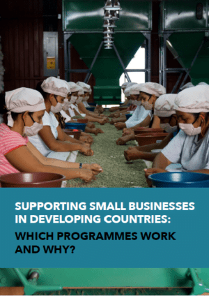 Supporting Small Businesses in Developing Countries: Which Programmes Work and Why?