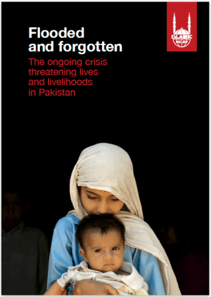 Flooded and Forgotten: The Ongoing Crisis affecting Lives and Livelihoods in Pakistan